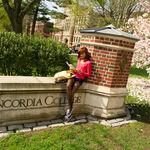 Kings New York Concordia College